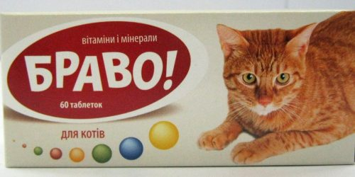 Bravo for cats